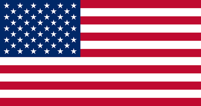 USA virtual number