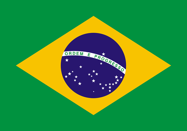 brazil virtual number