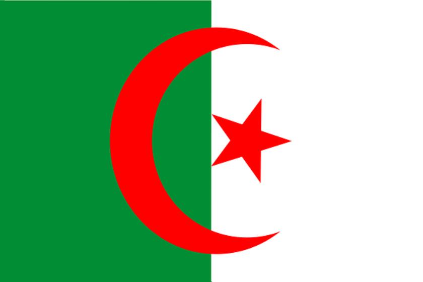 algeria virtual number